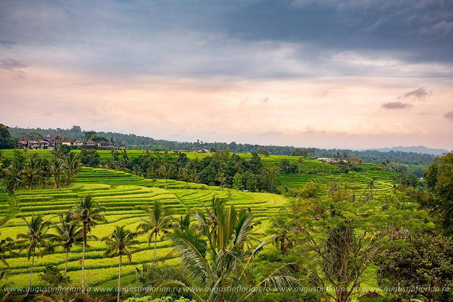 Orezării în Bali, Indonezia