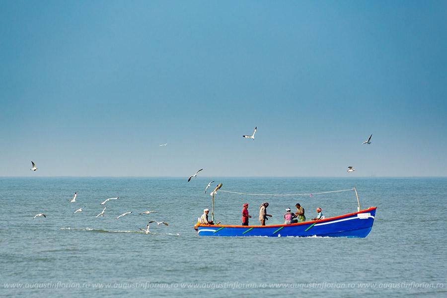 Alleppey -> Marari, India