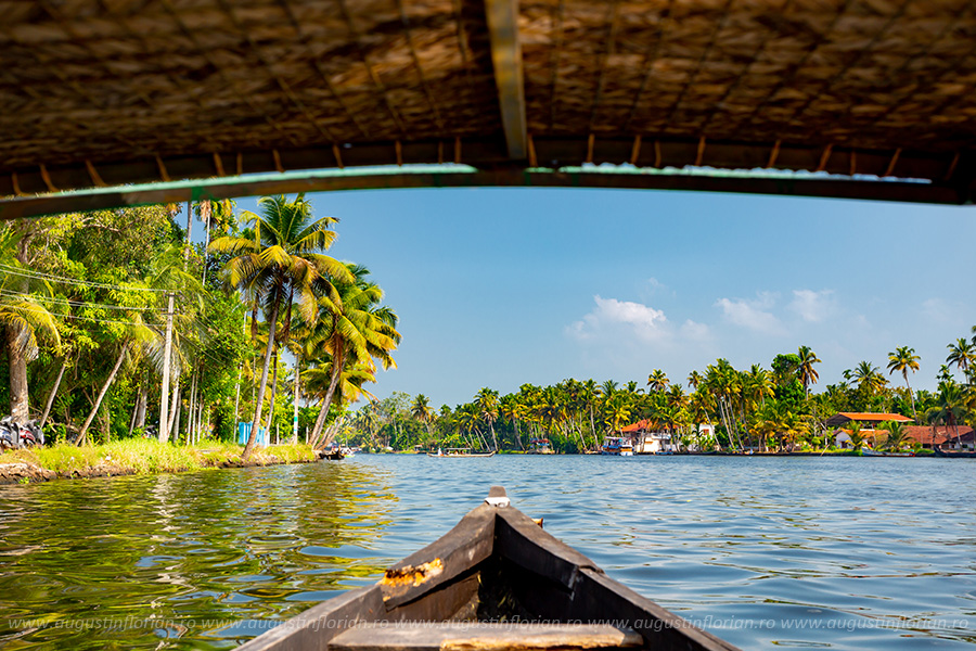 Canoe in Kerala, India