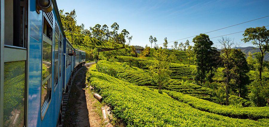Cu trenul din Ella, Sri Lanka
